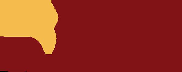 Colegio Fisioterapeutas de Castilla y León